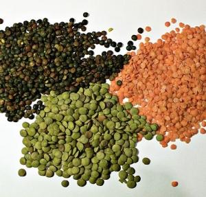 Varietà di lenticchie