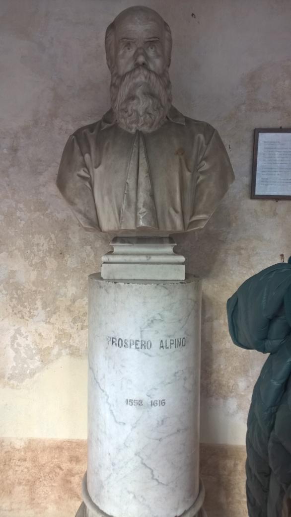 foto del Busto di Prospero Alpino